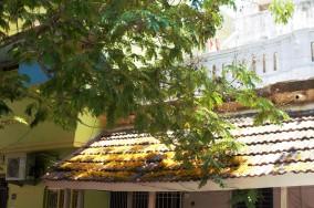 Pondicherry (42) (2)