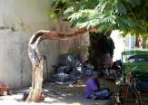 Pondicherry (50) (2)
