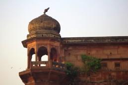 Varanasi (126)-1