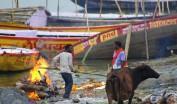 Varanasi (547)