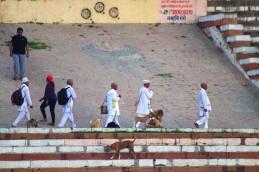 Varanasi (631)