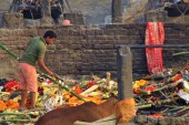 Varanasi (720)