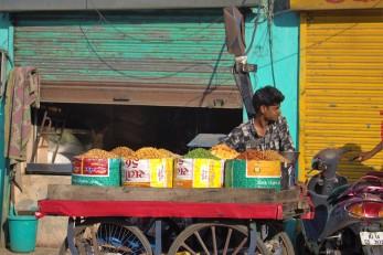 Jaipur (120)