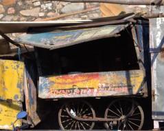 Jaipur (82)