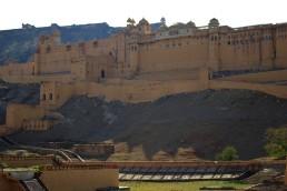 Jaipur (87)