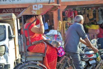 Jaipur (99)