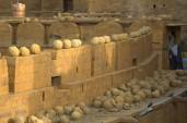 Jaisalmer (261)