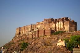 Jodhpur (118)