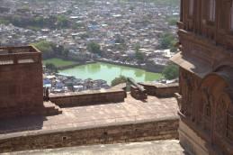 Jodhpur (225)