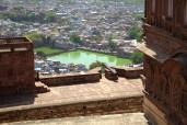 Jodhpur (227)