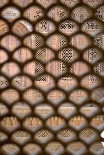 Jodhpur (233)