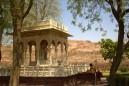Jodhpur (318)
