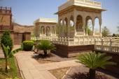 Jodhpur (365)