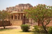 Jodhpur (374)