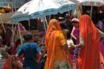 Jodhpur (403)