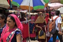Jodhpur (406)