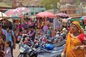 Jodhpur (407)