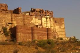 Jodhpur (440)