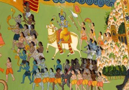 Jodhpur (463)