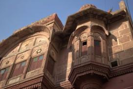 Jodhpur (50)