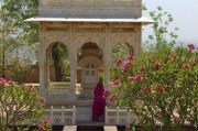 Jodhpur (555)