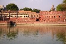 Jodhpur (60)