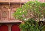 Jodhpur (62)