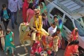 Pushkar (100)