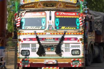 Ranthambhore (152)