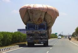 Road to Jaipur (22)