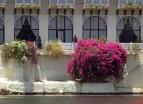 Udaipur (145)