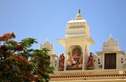 Udaipur (209)