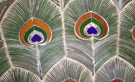 Udaipur (310)