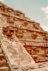 Tenochtitlan 1981 (1 of 1)