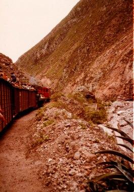 Train Riobamba to Guyaquil 1981 (1 of 1)
