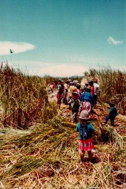 Uros Islands 1981 (1 of 1)